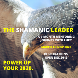lucy baker shamanic leadership mentor program